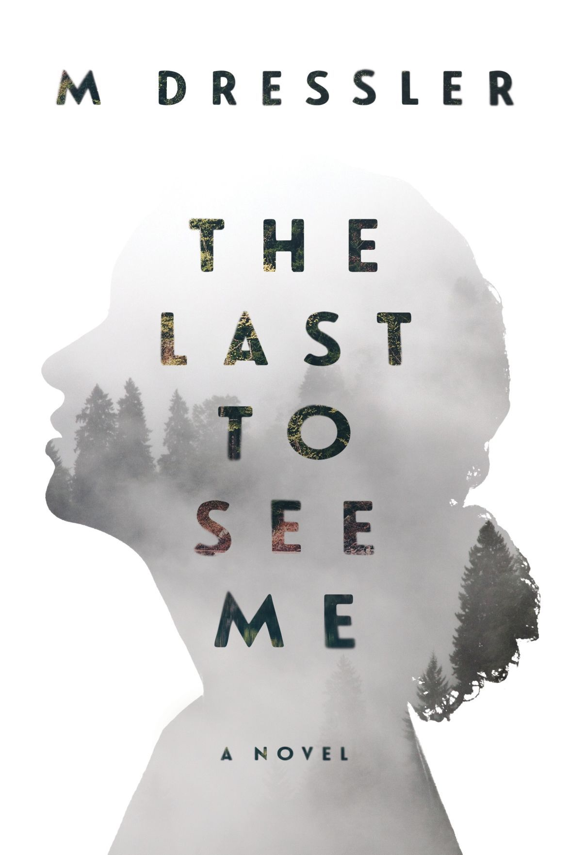 """BOOK REVIEW: """"The Last to See Me"""" by M Dressler"""