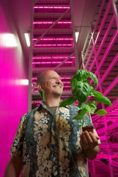 Creating Groundhog Day: Constant gardening at Green Sense Farms