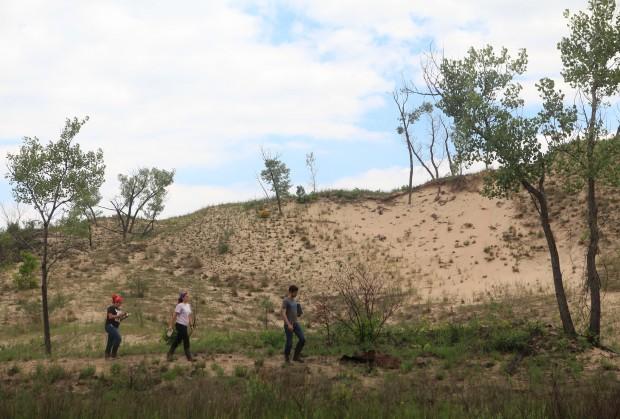 Tracking environmental restoration, stem by stem