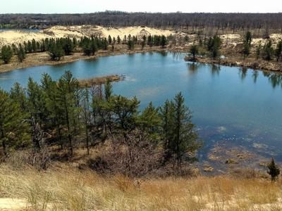 Miller Woods Trail System