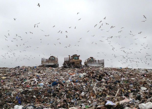 Not your grandfather's landfills