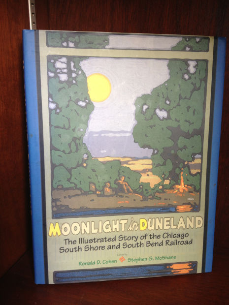 Moonlight in Duneland