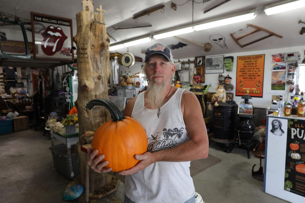 Pumpkins are just the start of the seasonal fun at area patches