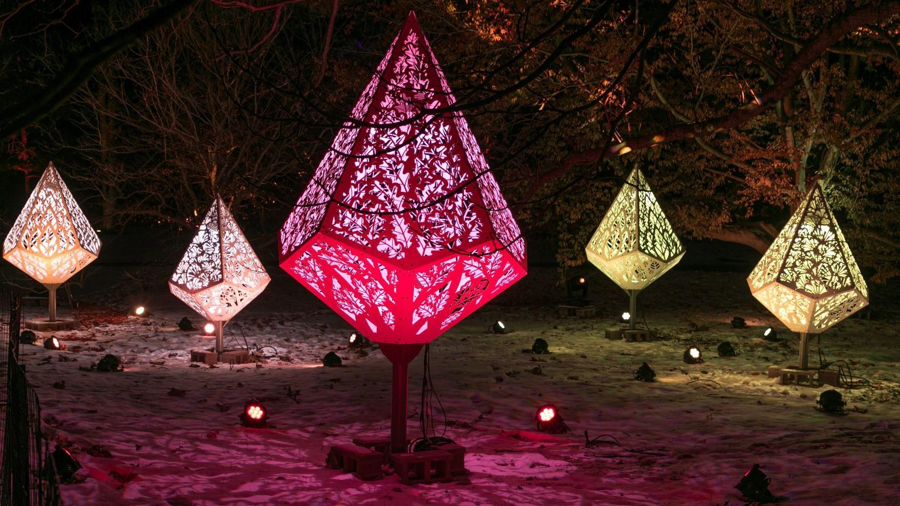 Morton Arboretum reimagines holiday lights display as driving trail