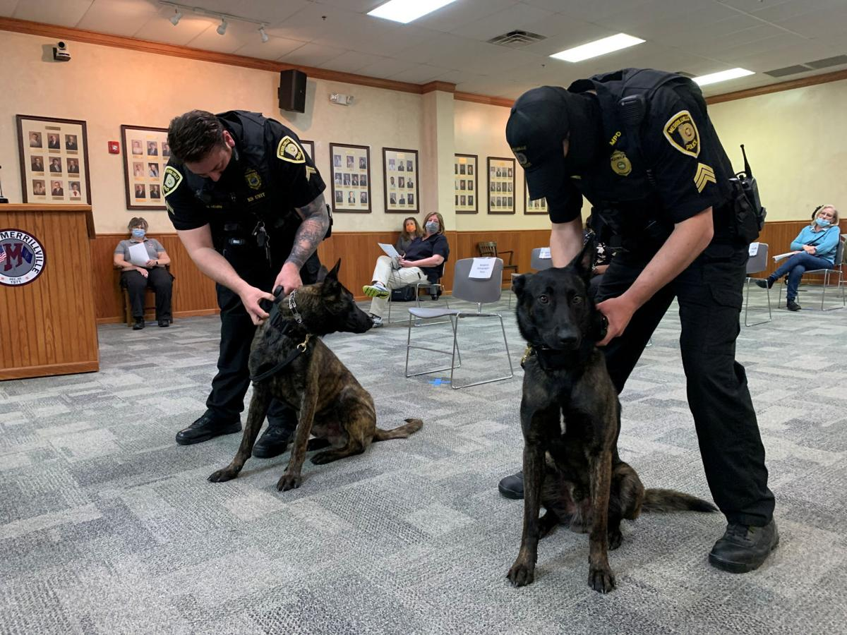 Merrillville adds K-9s to police force