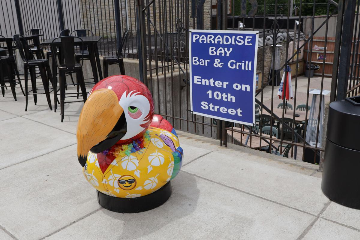 Flock of artistic ducks land downtown to help small businesses fly again