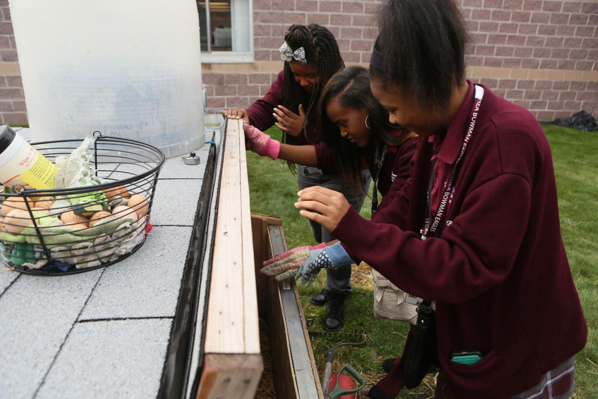 The students at Thea Bowman are working on an urban garden. They are raising chickens and eggs.