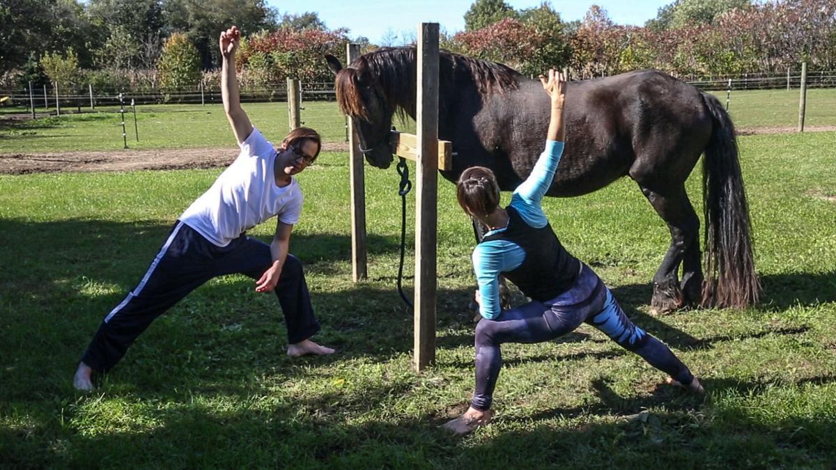 Horse & Yoga