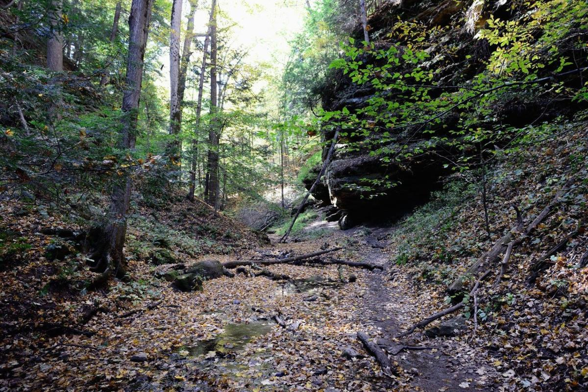 Take A Virtual Tour Of Indiana 39 S 25 State Parks Government And Politics