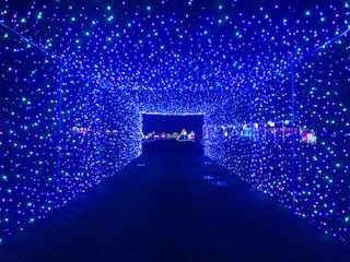 Harvest Tyme to host drive thru Christmas light show | Local News