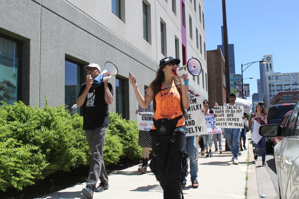 Fair Oaks protest Chicago 1