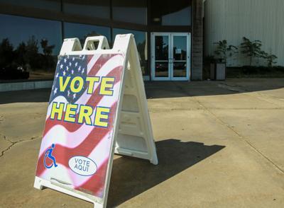 Voting stock