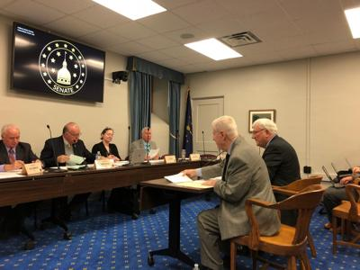 State lawmakers may give counties the option to change park board appointments