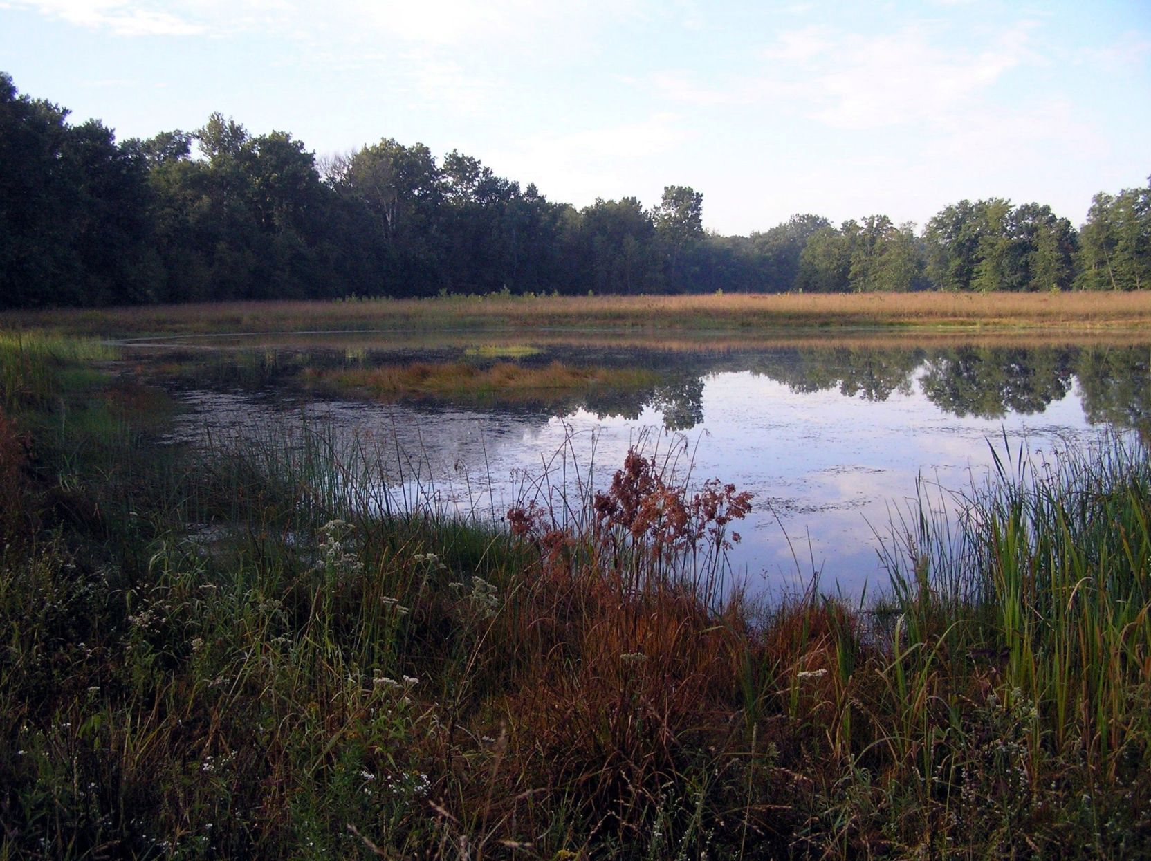 cover letter natural resources%0A JOHN HODSON  Meyer had plan to restore Kankakee Marsh