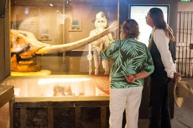 Mastodon Exhibit at the Porter County Museum