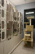 Munster Animal Hospital's Photos