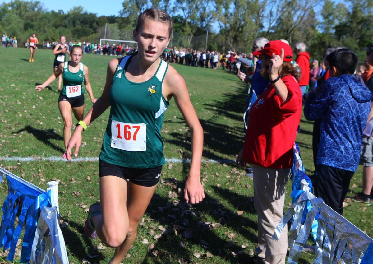 Duneland Athletic Conference cross country meet