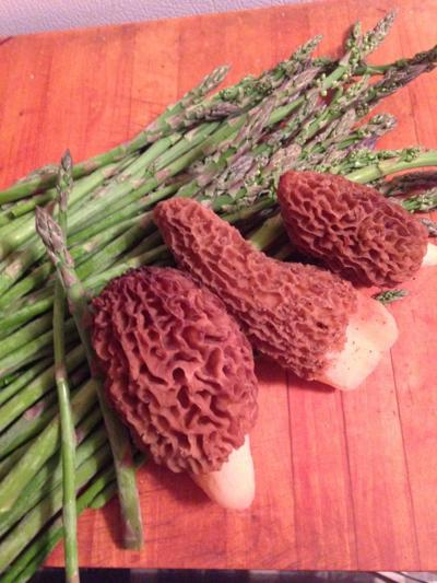 Spring Asparagus Spears and Morel Mushrooms