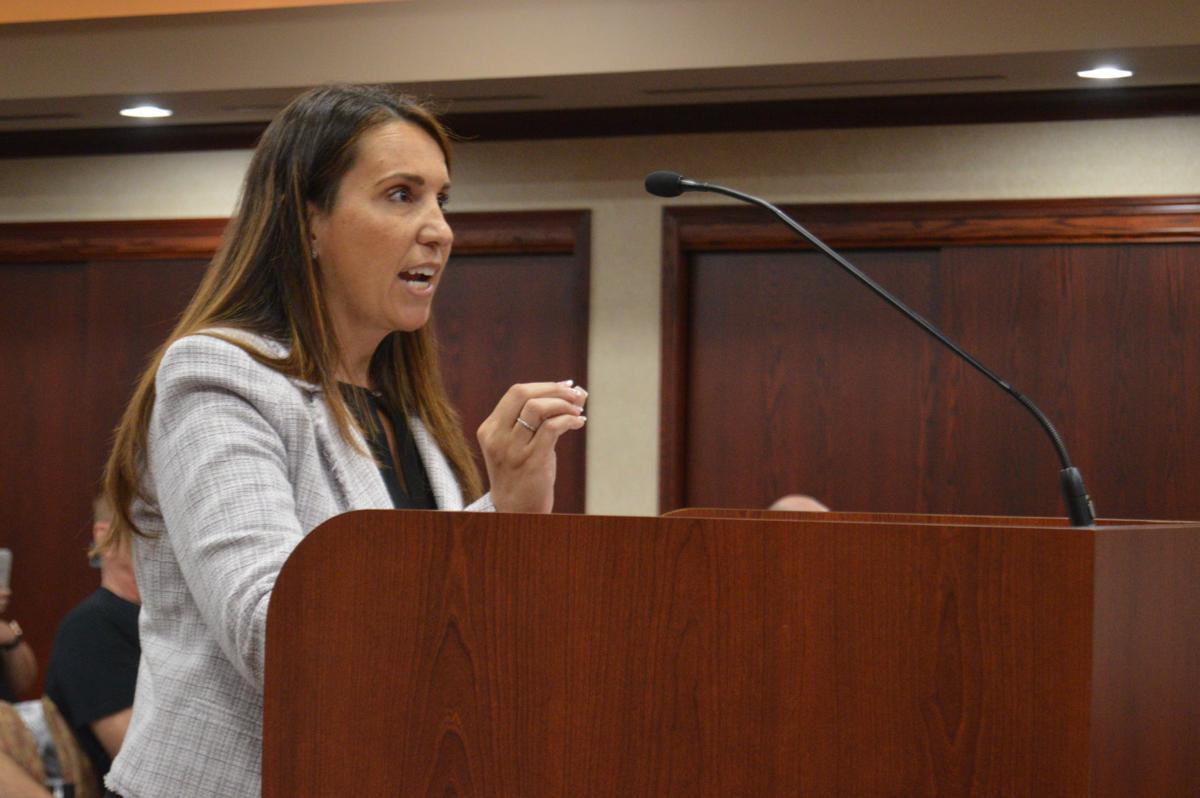 Tara Tauber at Town Council meeting