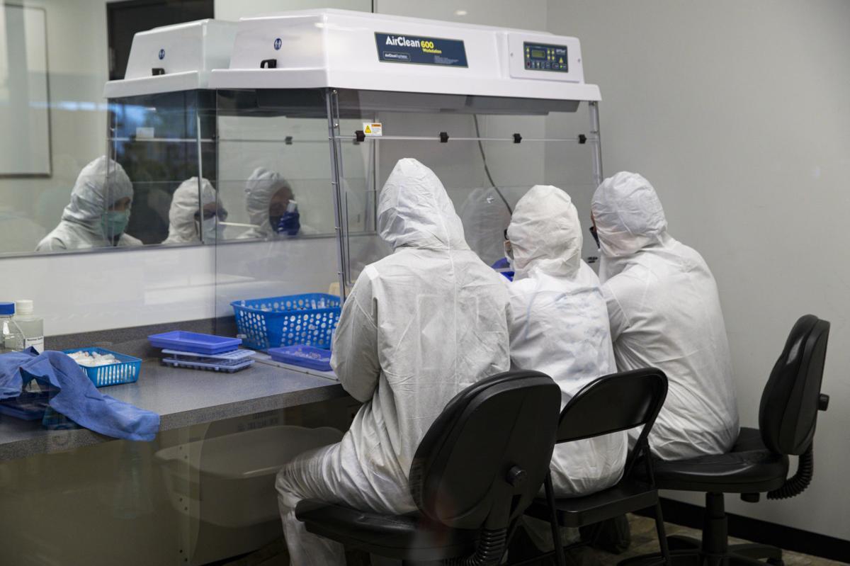 Virus Outbreak Testing Indiana