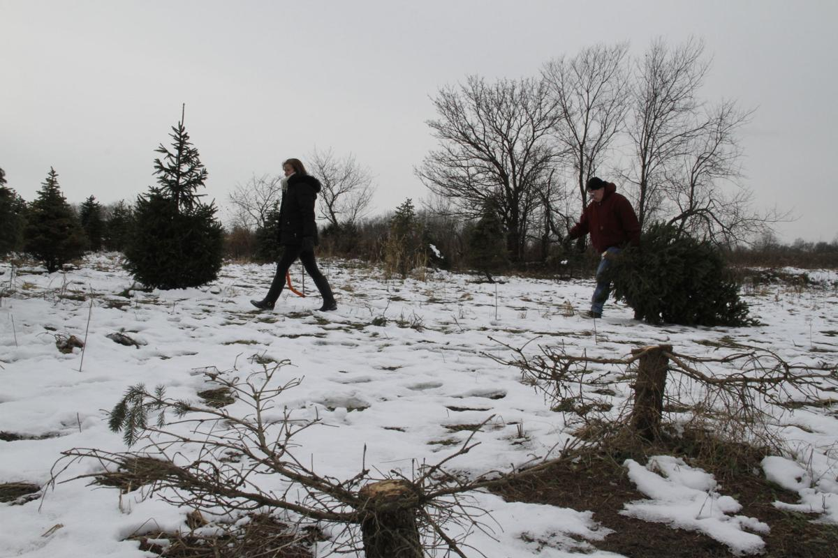 Luers Tree Farm development on hold pending annexation of final 150 ...
