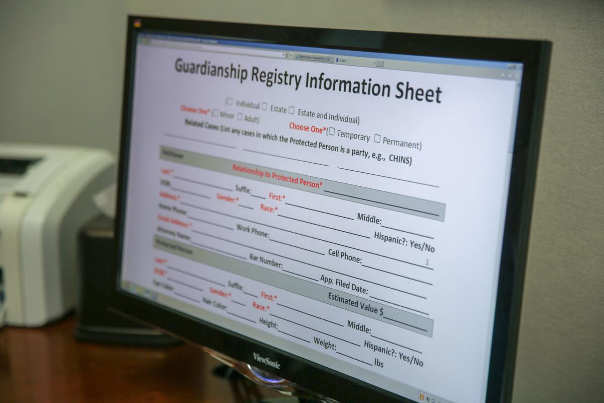 Porter County Superior Court Magistrate Mary DeBoer shows the online guardianship registry.