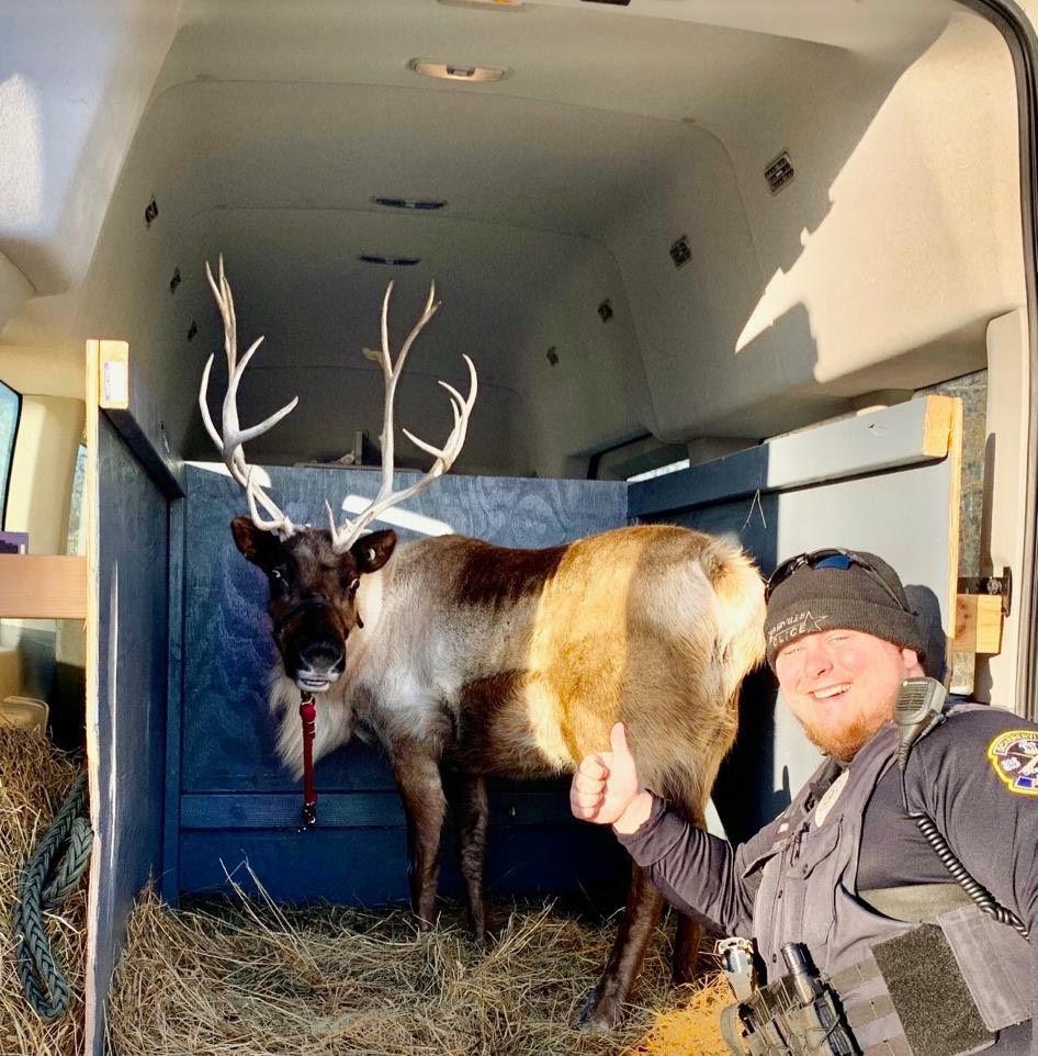 MAIN deer and officer.jpg