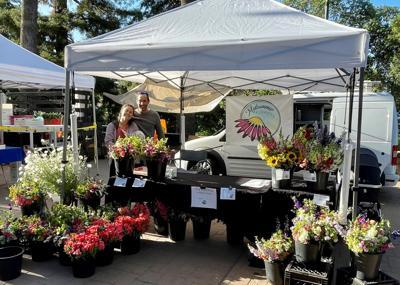 Monica Drazba Flower Market