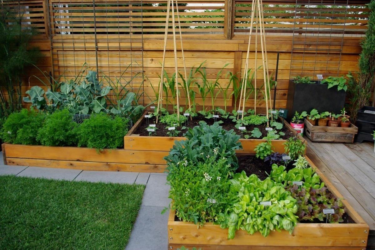 Uplifting Your Green Thumb Elevate your garden game with raised
