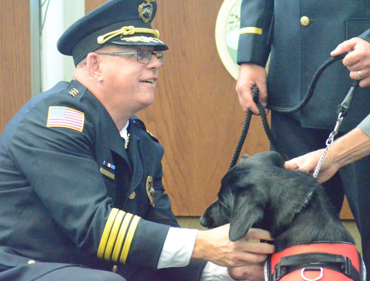Leo joins police force as first comfort canine