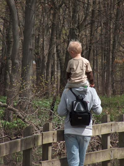 Family Nature Hike at Gibson Woods