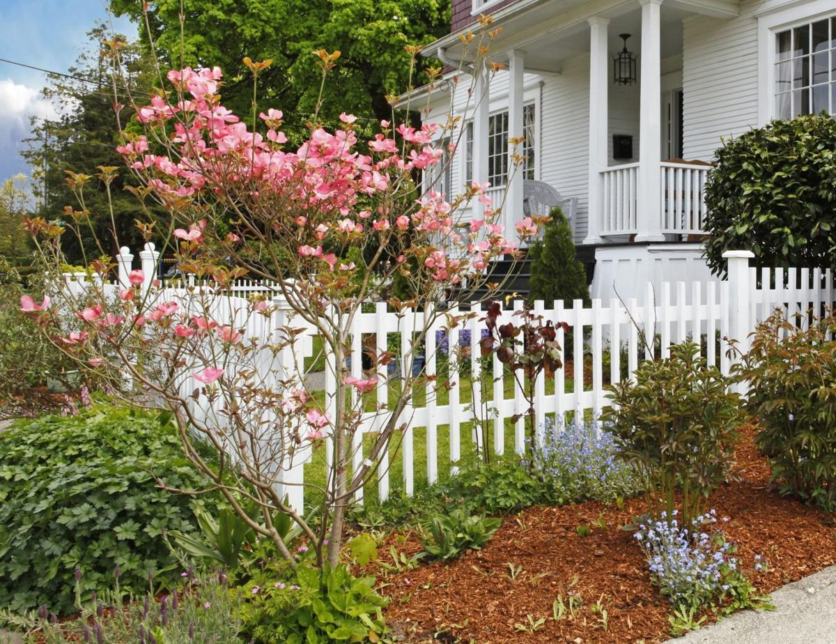 Spring Cleaning Tips for Your Yard