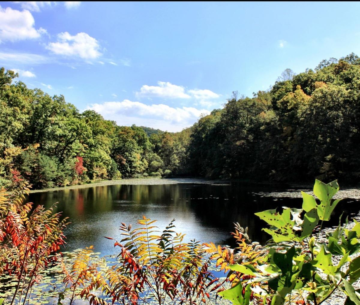 Shawnee State Park and Forest in south central Ohio