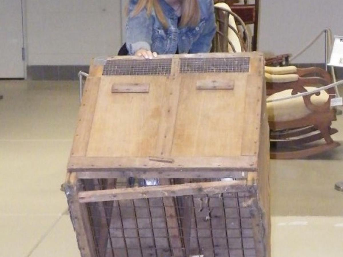 Chalk Paint Per Porte zoo to visit laporte county historical society museum
