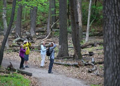 Birding Festival fies back to Indiana Dunes National Lakeshore with 'The Big Year' birder