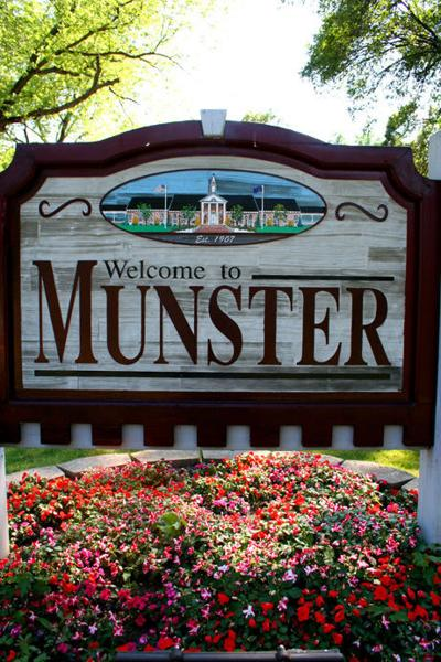 Munster stock