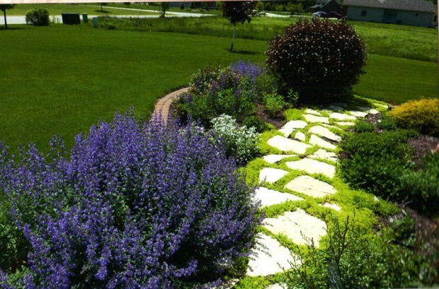 Contrasting Colors and Stone Highlights of Lowell Garden Walk