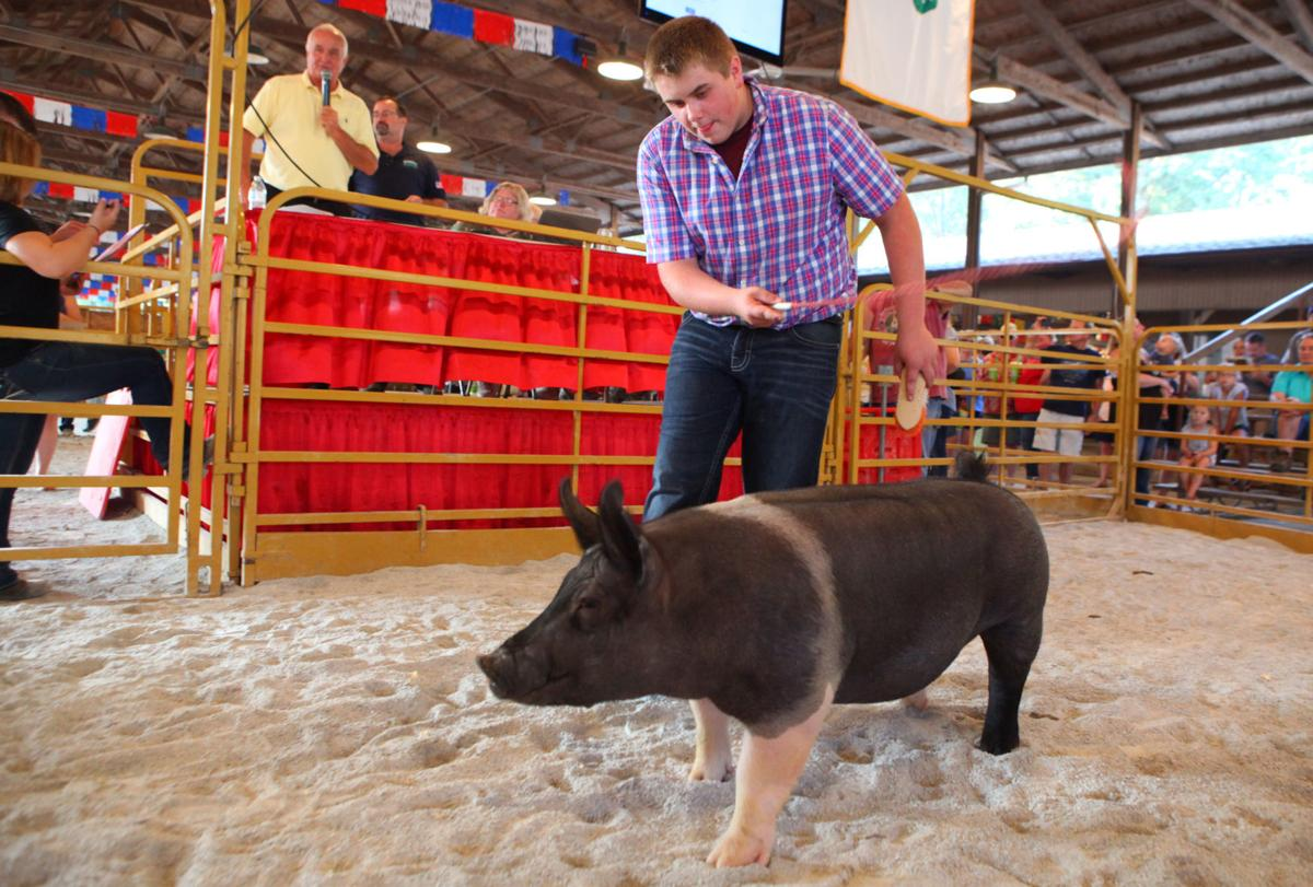 4-H Auction at the Lake County Fair