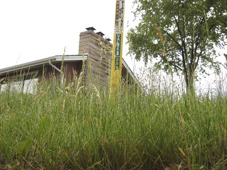 Officials: Mow lawn or face fines