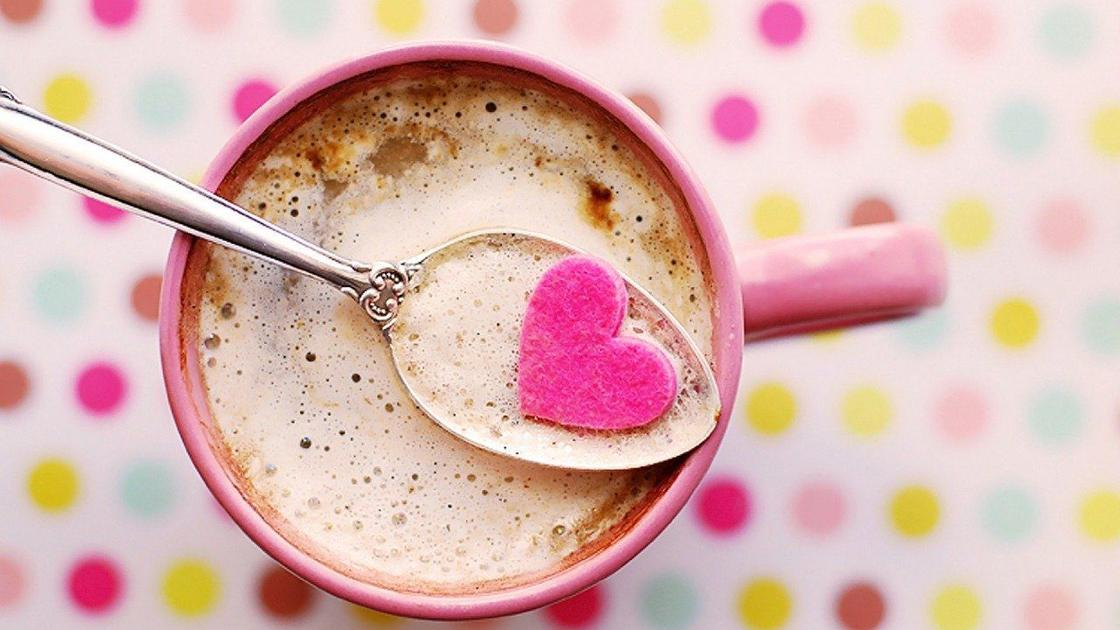 What's the best hot chocolate mix? A test of 10 brands