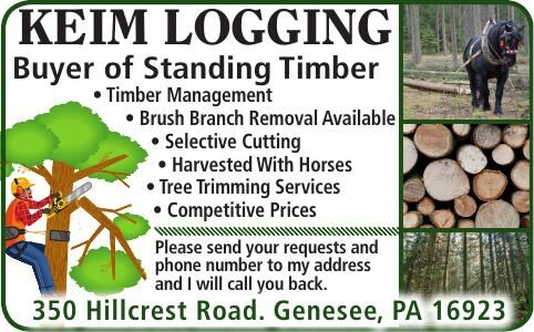 Keim Logging