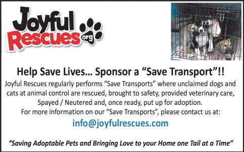 Joyful Rescues | Ads To Go | oleantimesherald com