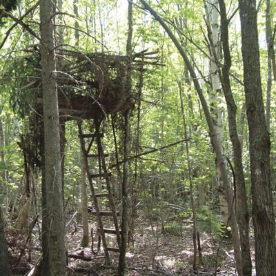 Everyday Hunter Don T Build Your Own Treestand Outdoors