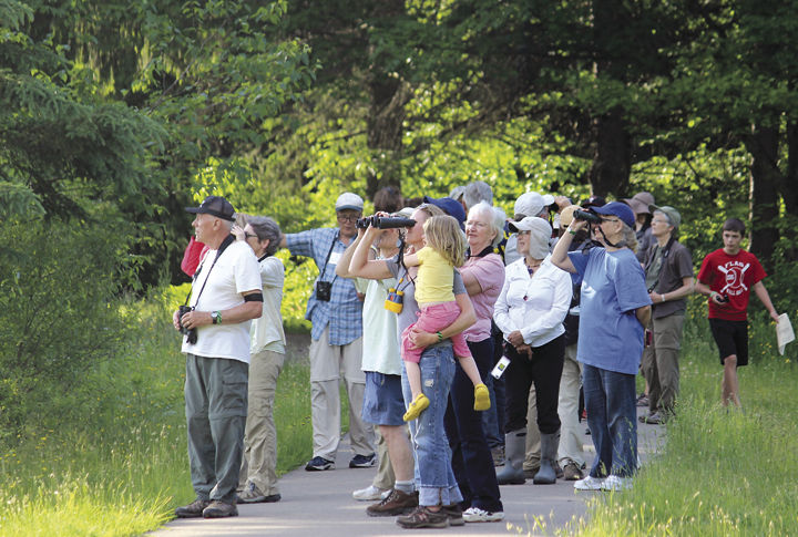 Allegany Nature Pilgrimage in Allegany State Park
