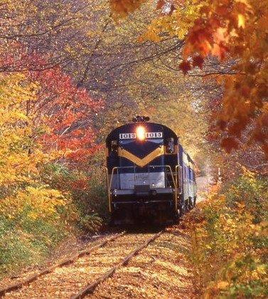 New York & Lake Erie Railroad Fall Train Ride