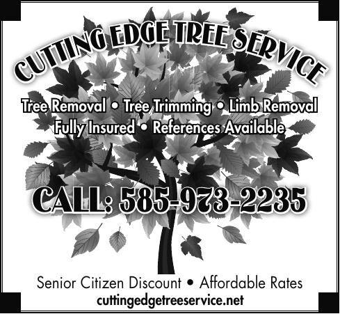 Cutting Edge Tree