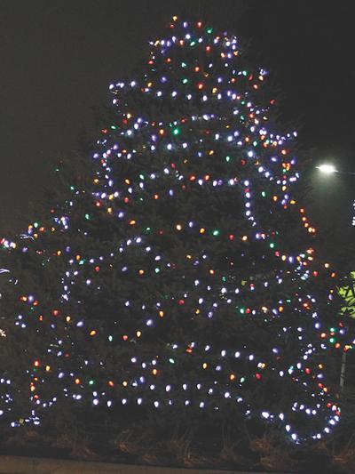 State & Union Christmas Tree
