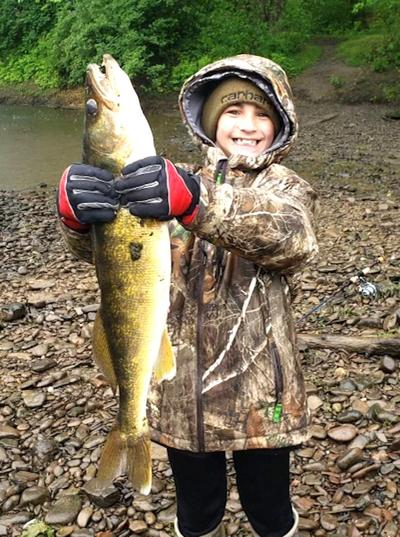 Monster walleye on the Allegheny