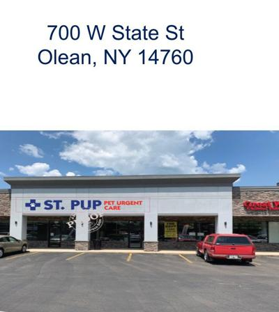 IDA sets public hearing on proposed pet urgent care facility in Olean