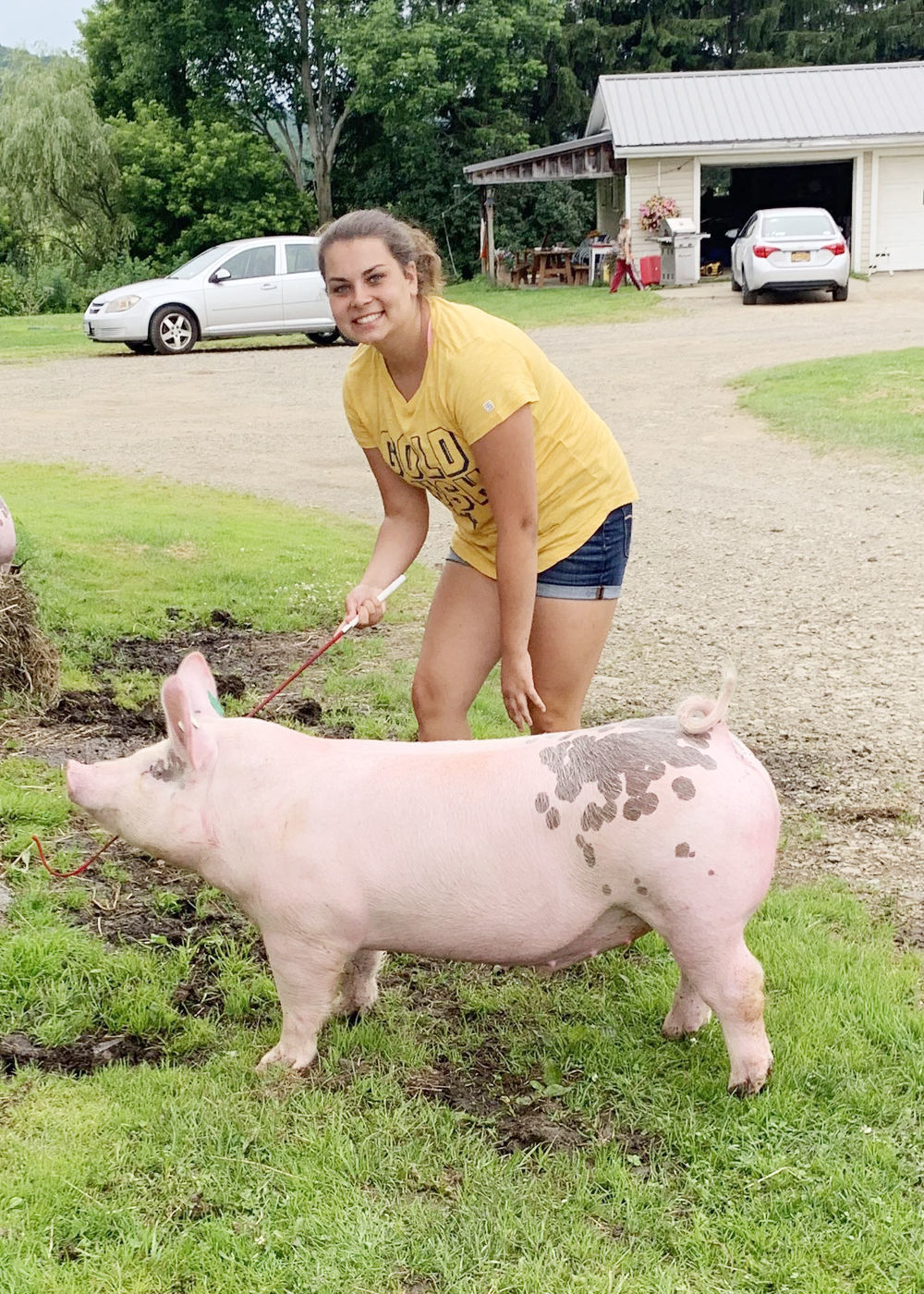 Making heads and tails of the Cattaraugus County Fair | News